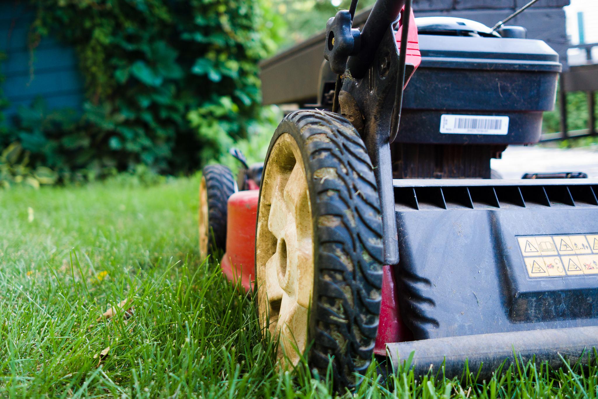 lawn mower back