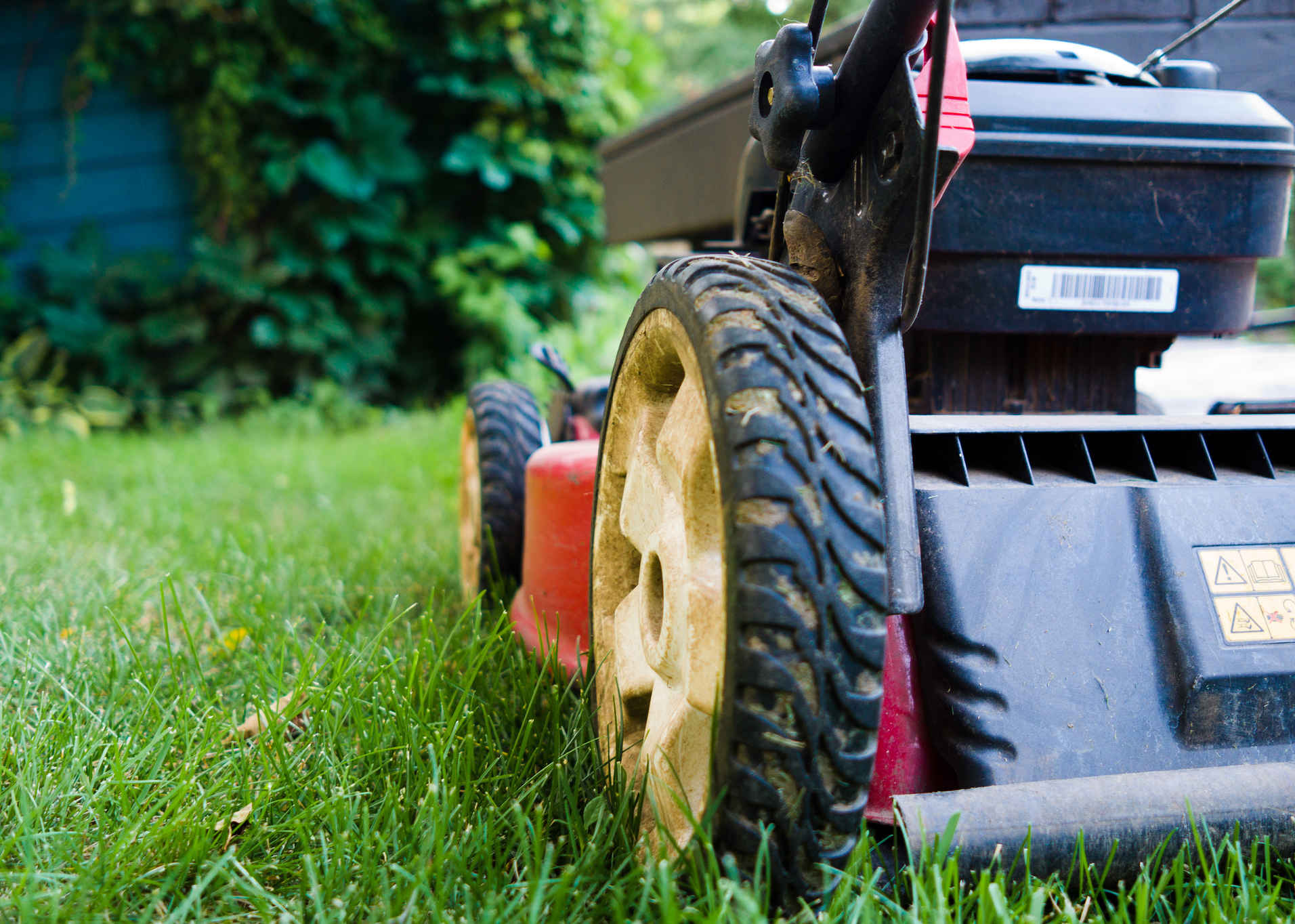 lawn mower back_cropped